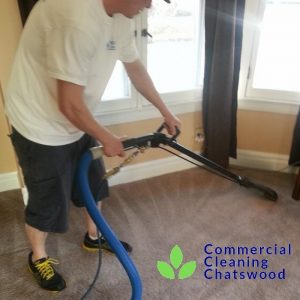 carpet cleaning lower north shore