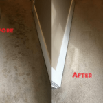 Carpet-Steam-Cleaning-Before-After-Steam-Cleaning-Sydney