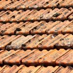 High-Pressure-Cleaning-Sydney-Roof-Tiles1-e1425778111105