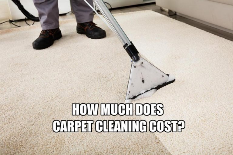 how much does carpet cleaning cost