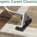 OrganicCarpetCleaningHome