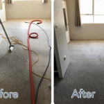 carpet-cleaning-Sydney.