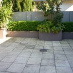 sydney-city-brick-and-high-pressure-cleaning-caringbah-cleaning-before-cleaning-with-our-high-pressure-rotary-cleaner-6acd-300x0